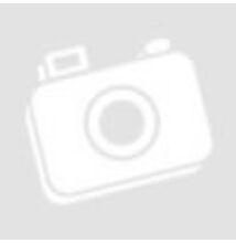 Abroncs DT Swiss ER 1400 kerékhez 24h (421 Assymetric disc)