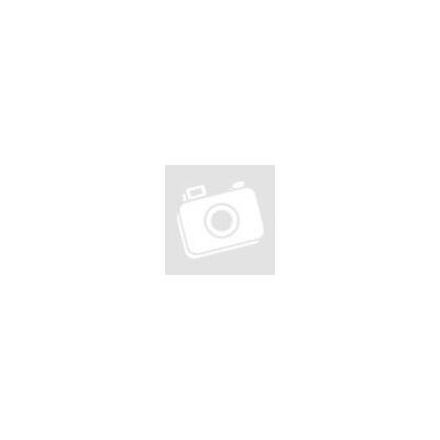 Kerékszett DT Swiss PR 1400 disc DICUT® 21 graphite